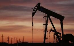 WSJ: Nhiều yếu tố sẽ giúp giá dầu phục hồi bền vững trong năm 2021