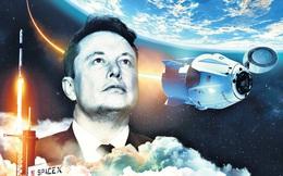 5 thói quen biến Elon Musk thành người giàu nhất thế giới với khối tài sản cỡ 200 tỷ USD