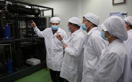 Cổ phiếu liên quan tập đoàn của ông chủ Novaland tăng 53% trong 10 ngày nhờ sản xuất thành công vắcxin phòng dịch tả lợn châu Phi