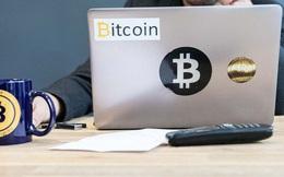 Bitcoin lao dốc thảm, đây là từ khóa mà người chơi coin đổ xô tìm kiếm trên Google để tìm ra nguyên nhân