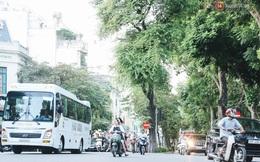 Nóng: Quảng Ninh tạm dừng hoạt động vận tải khách đường bộ, đường thuỷ