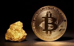 Tại sao mọi người lại bị ám ảnh bởi Bitcoin?