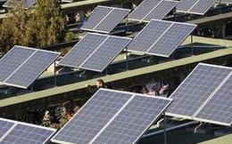 Loạt dự án 'chốt sổ' điện mặt trời hòa lưới điện quốc gia 2020