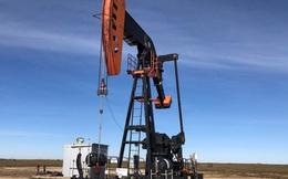 Saudi Arabia gây sốc khi bất ngờ cắt giảm mạnh sản lượng dầu