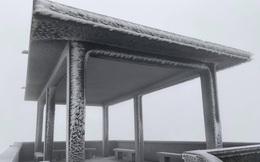 Sáng nay đỉnh Mẫu Sơn, Phia Oắc cây cối đóng băng, nhiều du khách thích thú chụp ảnh check in