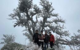 Du khách lên đỉnh Pia Oắc ngắm băng tuyết