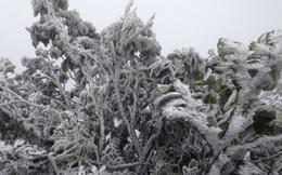 Không khí lạnh tăng cường, miền Bắc chìm trong giá rét, vùng núi cao mưa tuyết và băng giá