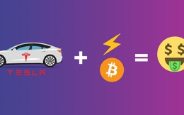 Tesla, Bitcoin và hợp đồng quyền chọn trở thành 'hầm trú ẩn' hái ra tiền của các day trader