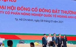 Ông Trần Bá Dương: Làm nông nghiệp nói chung và làm Chủ tịch HAGL Agrico nói riêng, với tôi là bất đắc dĩ!