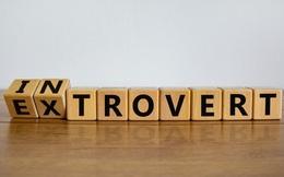4 cách cải thiện kỹ năng giao tiếp cho người hướng nội