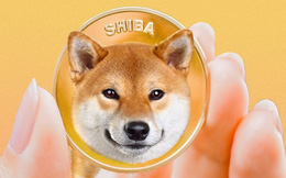 Sự nguy hiểm đằng sau cơn sốt tiền ảo Shiba Inu