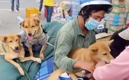 Vụ tiêu hủy đàn chó, mèo: Con ruột nữ trạm trưởng cũng xin nghỉ việc do không chịu nổi áp lực từ cộng đồng mạng