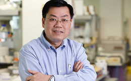 GS Nguyễn Văn Tuấn: Kết quả thử nghiệm cho thấy vaccine mRNA giảm lây nhiễm 100% ở trẻ, lợi ích của vaccine với trẻ em rất cao!