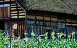 Những ngôi nhà an yên đẹp tựa tranh vẽ ở vùng nông thôn Nhật
