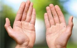 Bỏ ra 3 giây nhìn vào đặc điểm bàn tay, biết ngay hậu vận ai sướng, ai khổ