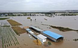 Lời giải nào cho bài toán khủng hoảng khí hậu?