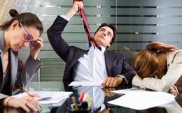 Vì sao nhiều người thường bất mãn với sếp ở chốn công sở?