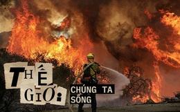 """Vì sao cháy rừng ngày càng cuồng bạo? Là vì một quả bom nổ chậm nhân loại vô tình tạo ra sau hàng thập kỷ chống lại """"giặc lửa"""""""