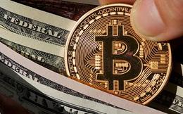 USD cao nhất 1 năm, Bitcoin vượt 50.000 USD, chứng khoán toàn cầu lao dốc