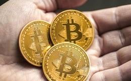 Giá Bitcoin lên cao nhất trong 5 tháng qua