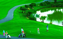 Quảng Bình cấm cán bộ chơi golf trong dịch Covid-19