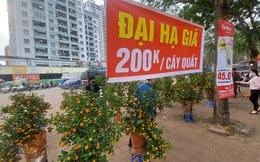 Người bán đồng loạt treo biển giảm giá, 'xả' cây và hoa ngày cuối năm