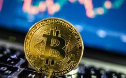 Bitcoin lên gần 50.000 USD sau một loạt động thái mới của phố Wall
