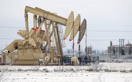 Giá dầu vượt 60USD/thùng khi 150 triệu người Mỹ phải sống trong giá lạnh