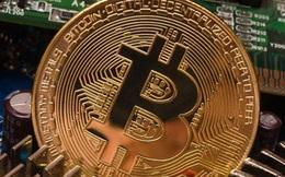 Cơn sốt Bitcoin càng dữ dội, lại thêm dự báo giá tăng gấp 10 lần hiện tại