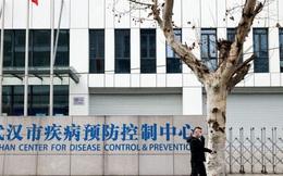 """WHO """"nóng mặt"""" vì cuộc điều tra Covid-19 ở Trung Quốc"""