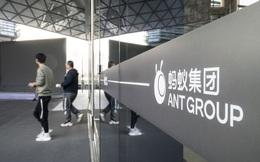 Ant - Startup kinh doanh lời lãi nhất thế giới: Lãi 2,3 tỷ USD trong riêng 1 quý!