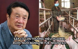 Doanh số smartphone giảm, Huawei chuyển sang... nuôi lợn