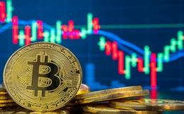 Bitcoin liên tục đu đỉnh phản ánh những rủi ro tiềm ẩn