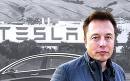 Không bênh nổi 'con cưng', Elon Musk lần đầu thừa nhận Tesla có vấn đề về chất lượng