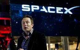 NASA giao kính viễn vọng trị giá gần 100 triệu USD cho Elon Musk phóng lên quỹ đạo, ôm tham vọng khám phá thời khắc vũ trụ hình thành