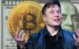 Từ một người được cho Bitcoin cũng không để ý, Elon Musk đã thay đổi