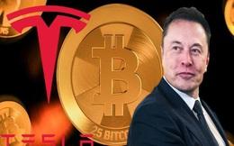 Tesla bốc hơi 300 tỷ USD giá trị thị trường do đầu cơ Bitcoin?