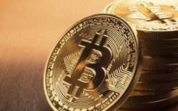 Nhà đầu tư lại đua giá, Bitcoin áp sát đỉnh kỷ lục