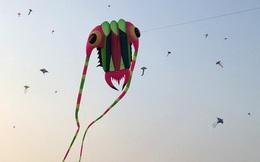 [ẢNH] Nghìn người Sài Gòn đua diều trong chiều lộng gió, trẻ nhỏ hò hét khi thấy diều khổng lồ, kỳ quái 'cất cánh'