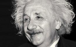 Giáo sư Harvard cho rằng có 8 loại hình trí thông minh. Đọc để biết bạn nằm ở mục nào, có chuyên môn gì, xây dựng sự nghiệp ra sao