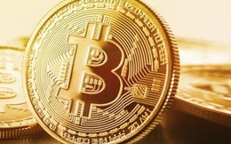 """Mới phá kỷ lục hồi tuần trước, Bitcoin lại """"rơi thẳng đứng"""""""