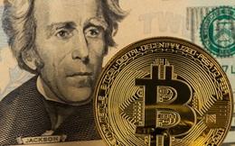 """Nhận tiền cứu trợ kinh tế, người Mỹ sẽ """"ném"""" sạch vào Bitcoin và chứng khoán?"""