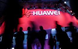 """Sau chăn lợn, Huawei sẽ """"nuôi cá và trồng thêm rau"""""""
