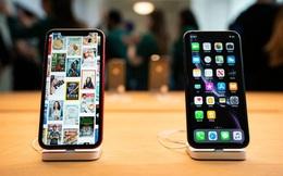 Mức độ trung thành của người dùng iPhone đạt mức cao nhất trong lịch sử