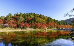 """Toyota - """"Thiên đường dưới hạ giới"""": Đắm mình trong thiên nhiên kỳ vĩ và văn hoá bản địa độc đáo!"""