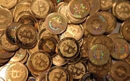 Đầu tư tiền ảo: 78-80% số người tham gia mất tiền vì không am hiểu