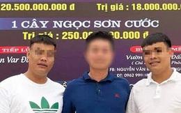 """Quảng Ninh: Công an xác minh """"màn"""" giao dịch lan đột biến trị giá gần 300 tỷ đồng"""