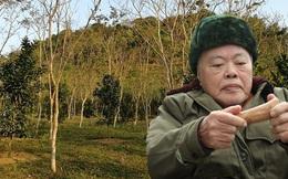 """Một xã ở Việt Nam, nông dân chôn """"vàng ròng"""" dưới đất, ra ngõ là gặp tỷ phú"""
