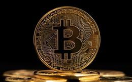 """""""Giá Bitcoin có thể lên 300.000 USD, sau đó vỡ bong bóng"""""""