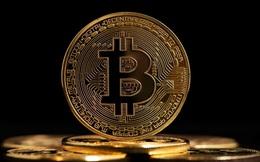 Xã hội không tiền mặt tại Bắc Âu từ chối Bitcoin vì... quá đắt